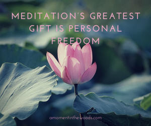 The Meditation's Greatest Gift is Personal Freedom1 (1)